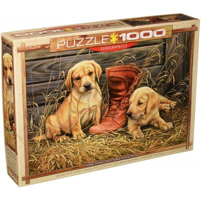 Puzzle Eurographics-6000-0795 Rosemary Millette - Something Old Something New