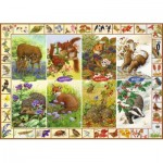 Puzzle  Jumbo-11200 Sarah Adams - Seasonal Wildlife