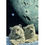 Puzzle  Grafika-Kids-01668 Schim Schimmel - Lair of the Snow Leopard