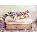 Puzzle  Grafika-01610 Konrad Bak: Baby sleeping in the Lilac