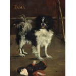 Puzzle  Grafika-01747 Edouard Manet: Tama: The Japanese Dog, 1875