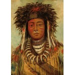 Puzzle  Grafika-02228 George Catlin: Boy Chief - Ojibbeway, 1843
