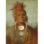 Puzzle   George Catlin: See-non-ty-a, an Iowa Medicine Man, 1844-1845