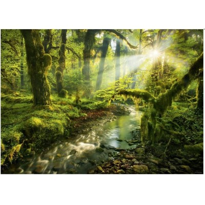 Puzzle Heye-29771 Magic Forests, Spirit Garden