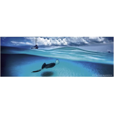 Puzzle Heye-70170-29531 David Doubilet: Stingray