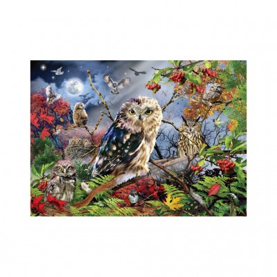 Puzzle Jumbo-18859 Owls in the Moonlight