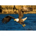 Puzzle  KS-Games-10106 Eagle at Hunting