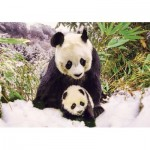 Puzzle  KS-Games-10109 Panda Mother