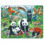Rahmenpuzzle - Panda Bear Family on a China Mountain Plateau