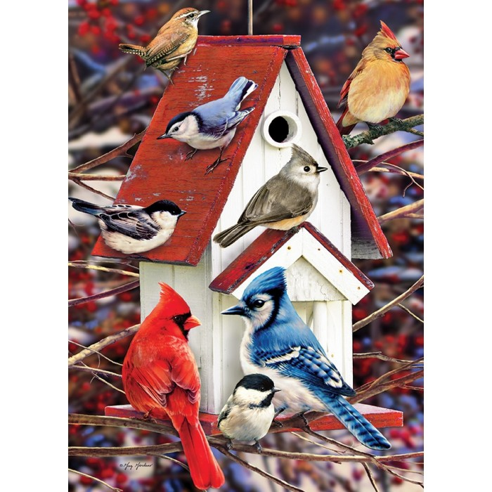 cobble-hill-outset-media-greg-giordano-winter-birdhouse
