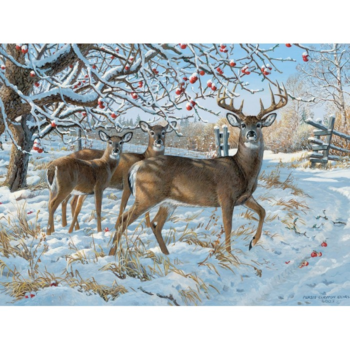cobble-hill-outset-media-persis-clayton-weirs-winter-deer