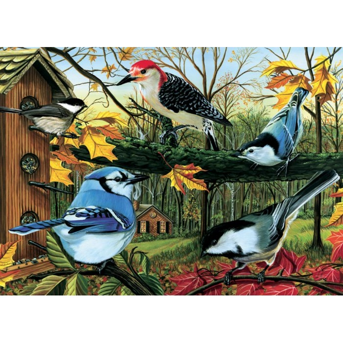 cobble-hill-outset-media-blue-jay-and-friends
