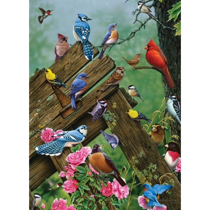 cobble-hill-outset-media-birds-of-the-forest