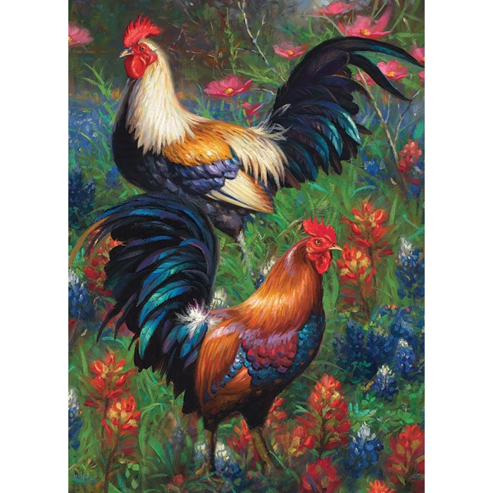 cobble-hill-outset-media-roosters