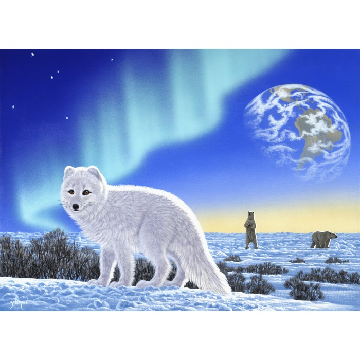 grafika-schim-schimmel-artic-fox