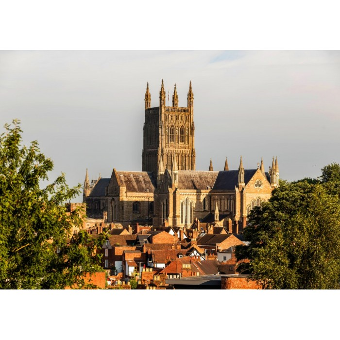 grafika-worcester-cathedral-viewed-from-fort-royal-park