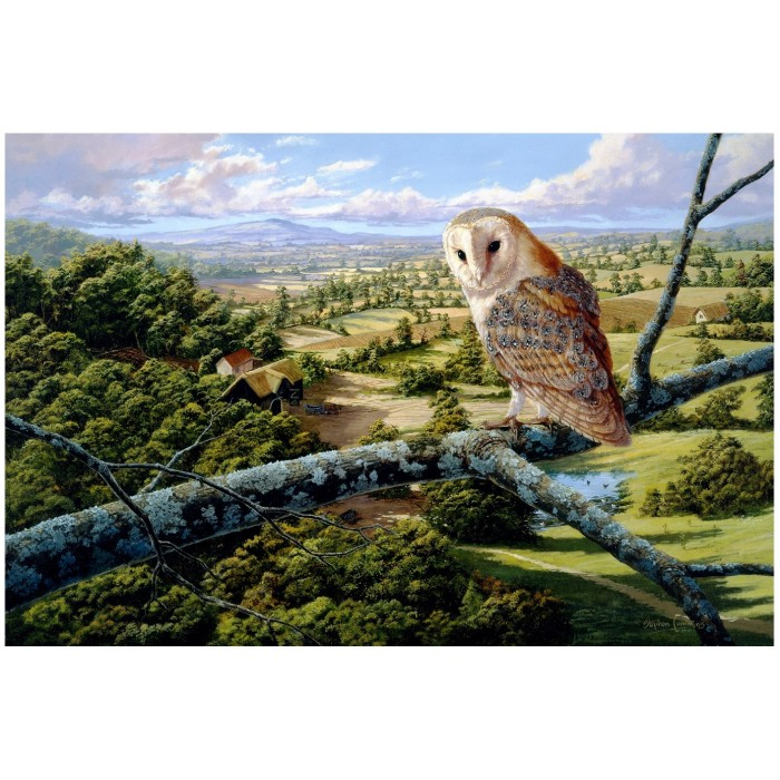 wentworth-holzpuzzle-barn-owl