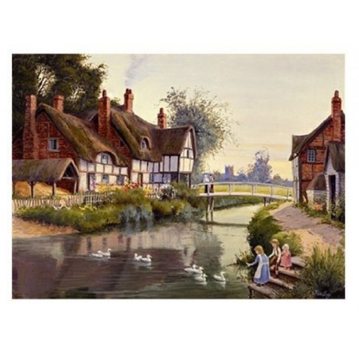 the-house-of-puzzles-village-pond