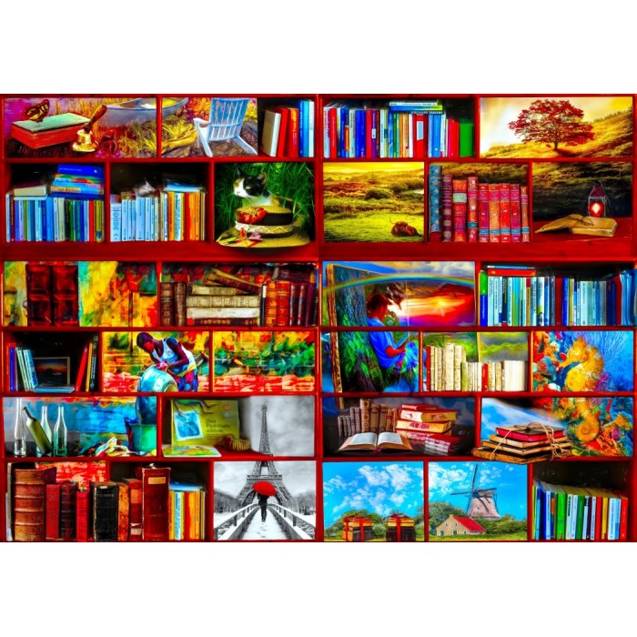 bluebird-puzzle-the-library-the-travel-section