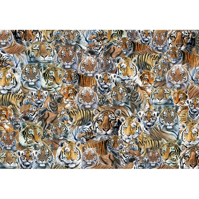 otter-house-puzzle-impossible-puzzle-tigers