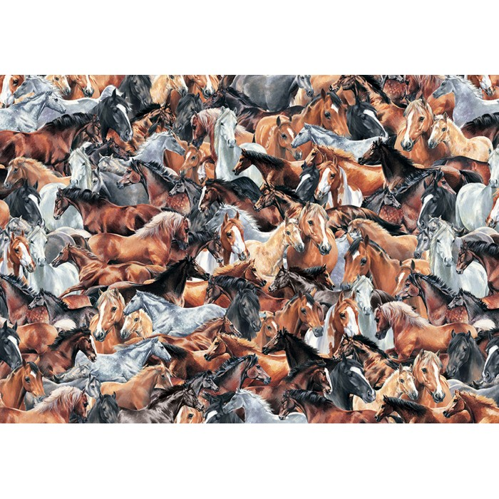 otter-house-puzzle-impossible-puzzle-horses