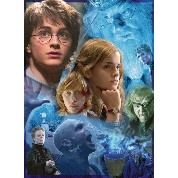 ravensburger-harry-potter-in-hogwarts-tm-