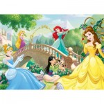 Puzzle  Nathan-86567 Disney Princess