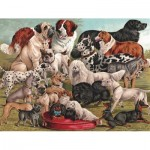 Puzzle  New-York-Puzzle-PD1880 Dog Breeds