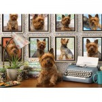Puzzle  Cobble-Hill-80038 Yorkies Are My Type