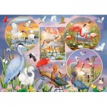 Puzzle  Cobble-Hill-80219 Waterbird Magic