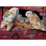 Puzzle   Barn Owls