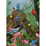 Puzzle   Birds of the Forest