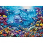 Puzzle   Dolphins at Play