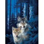 Puzzle   Wolf Canyon