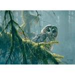 Puzzle   XXL Teile - Mossy Branches - Spotted Owl