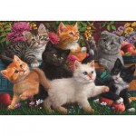 Puzzle   Kittens Playing