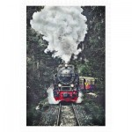 Puzzle aus Kunststoff - The Steam Train, Switzerland