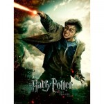 Puzzle  Ravensburger-12869 XXL Teile - Harry Potter