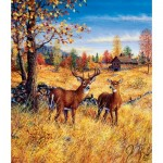 Puzzle  Sunsout-36507 Jeff Tift - Colors of Autumn