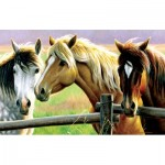 Puzzle  Sunsout-70922 Cynthie Fisher - Horse Fence