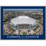 Puzzle  White-Mountain-660 Cowboy Stadium, Arlington Texas